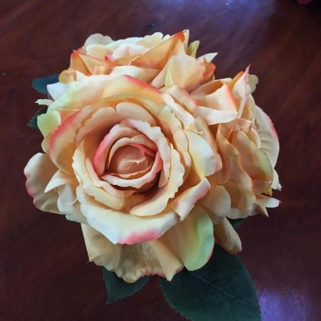 Rose Bundle