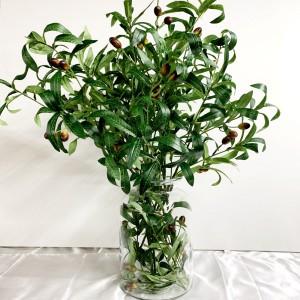 Olive Arrangement