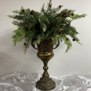 Cypress Pine Arrangement