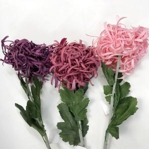 Chrysanehemum