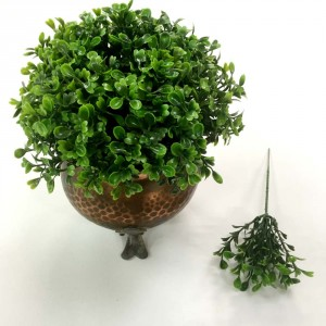 Boxwood picks