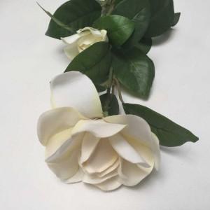 Gardenia Stem