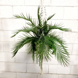 Palm Basket