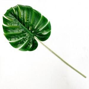 Monsteria Leaf
