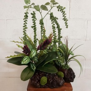 Amaranthus Arrangement