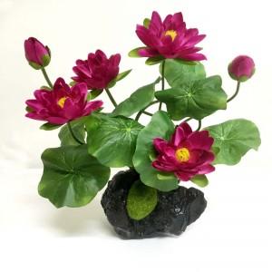 Lotus Arrangement