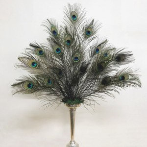 Peacock Arrangement