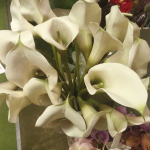 Calla lily lge (rubber)