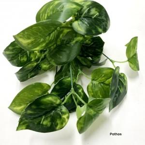 Greenery Bushes