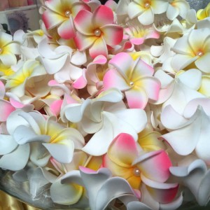 Real Touch Frangipani