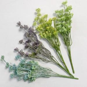 Seed Grass