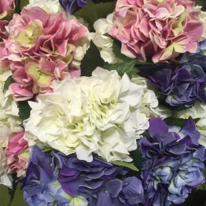 Hydrangea Water Flowers