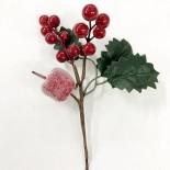 Berry Pick